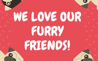 furryfriends
